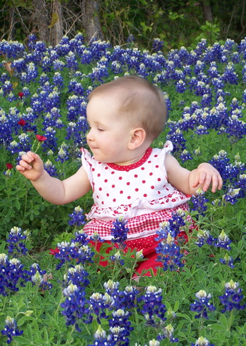Megan in Bluebonnets